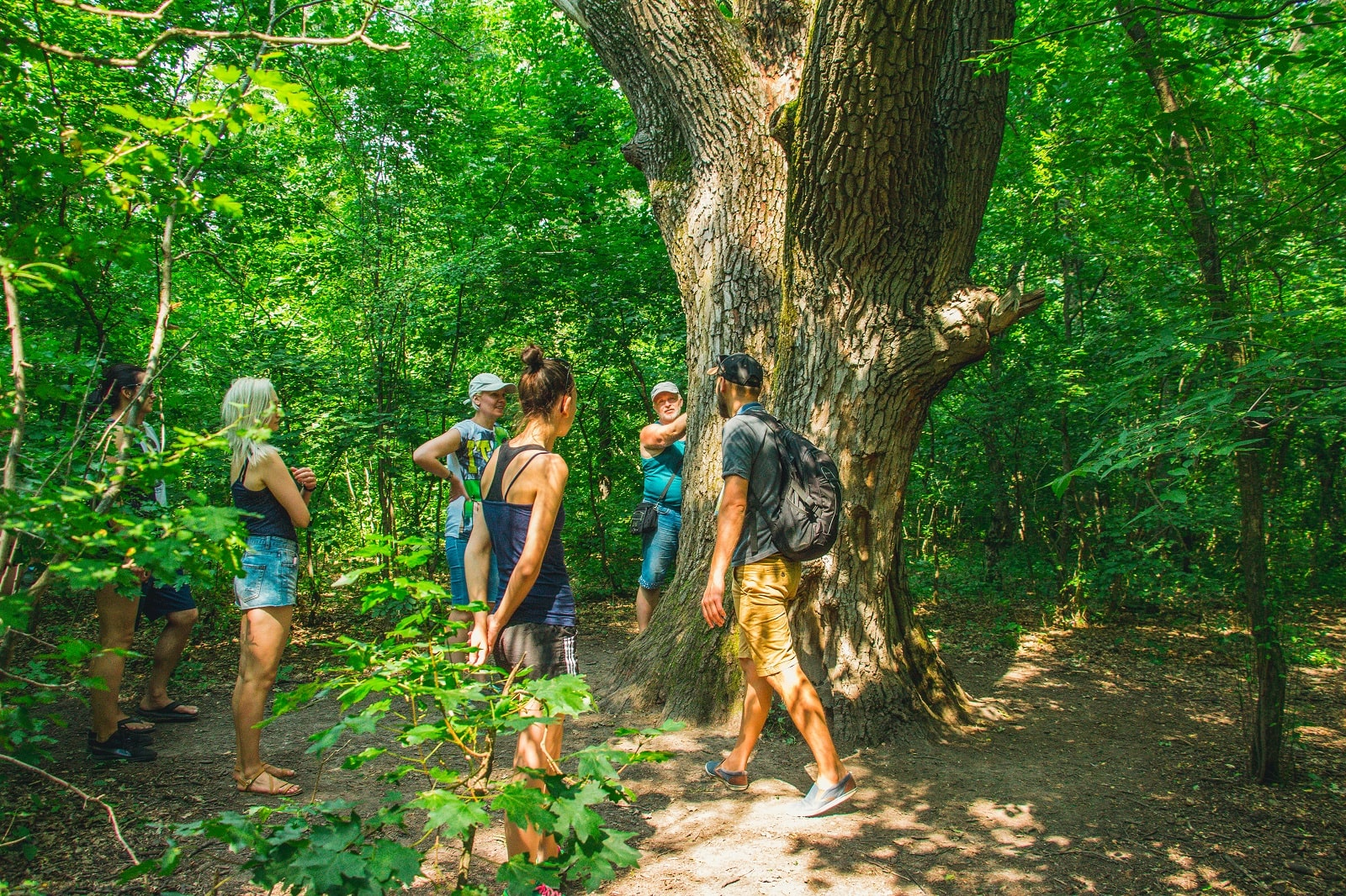 Екскурсія в Трикратському лісі