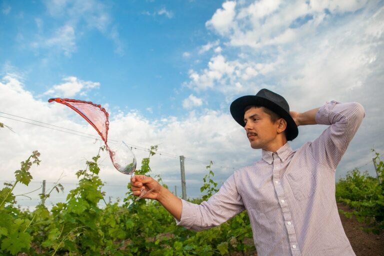 Фотосесії на виноградниках