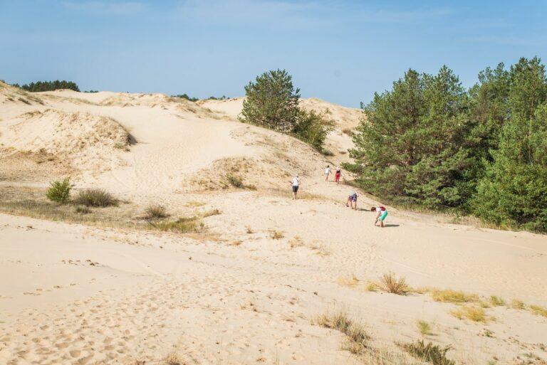 Пустеля в Олешках