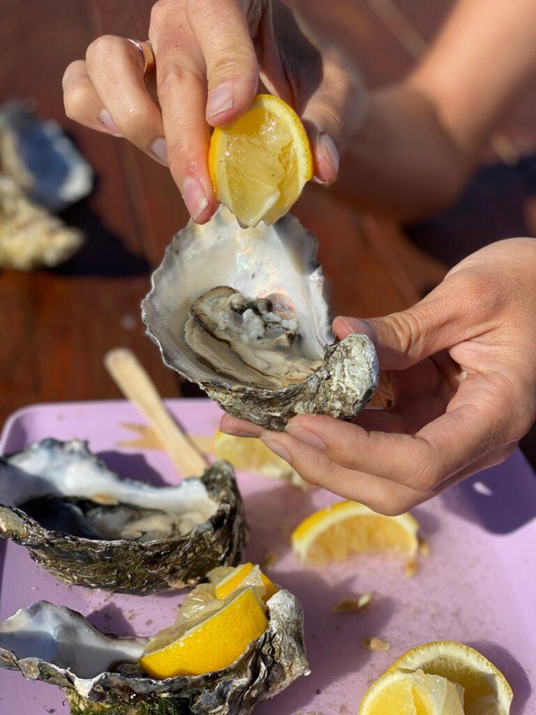 Дегустація молюсків