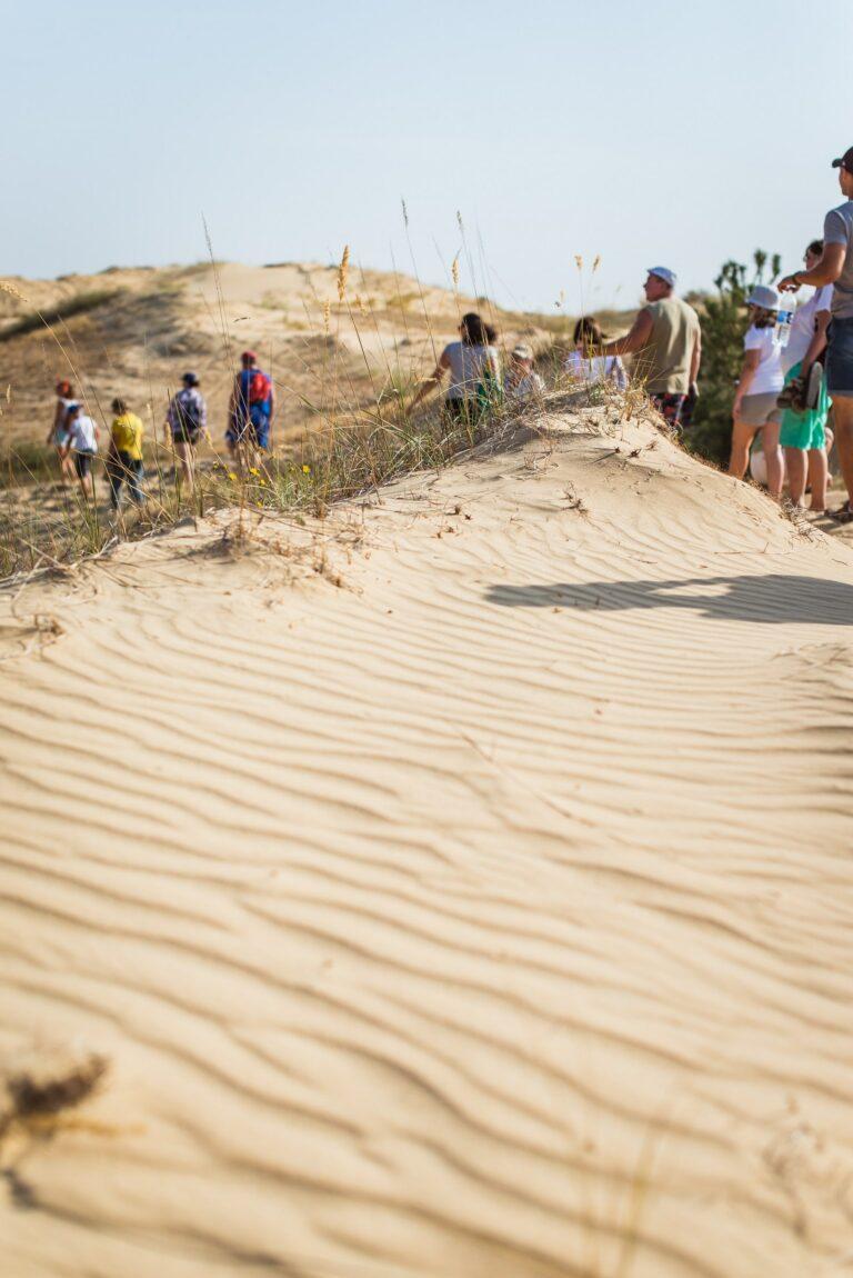Похід в глиб пустелі