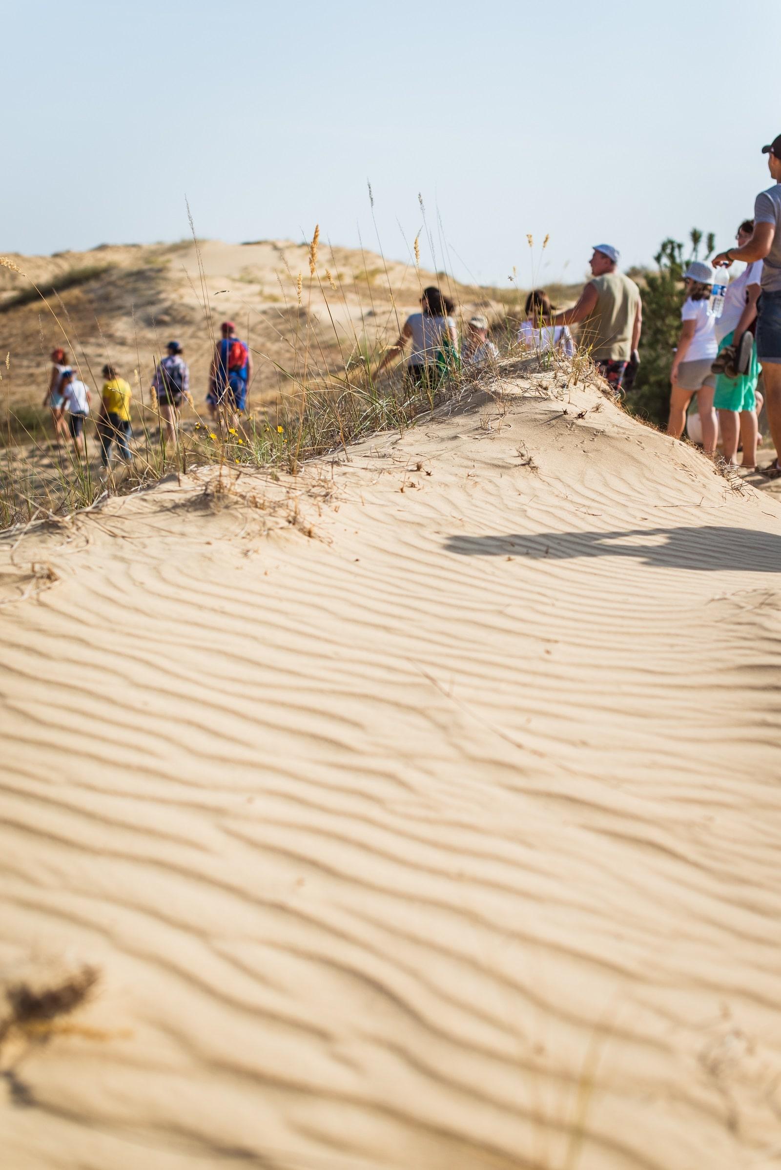 Поход вглубь пустыни