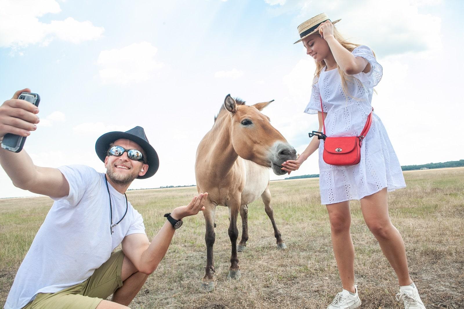 Селфи с осликом