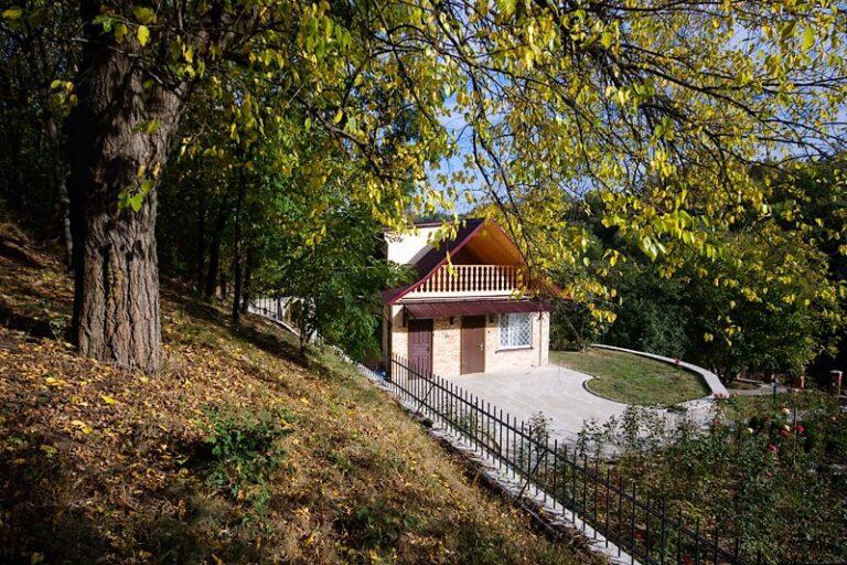 В садибі Звенигород влітку