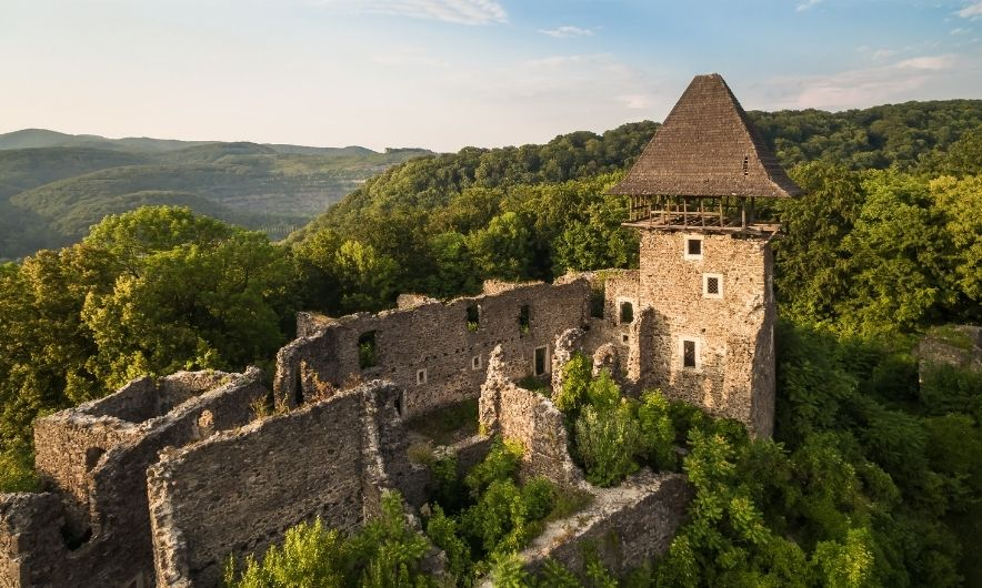 Замок в Невицькому