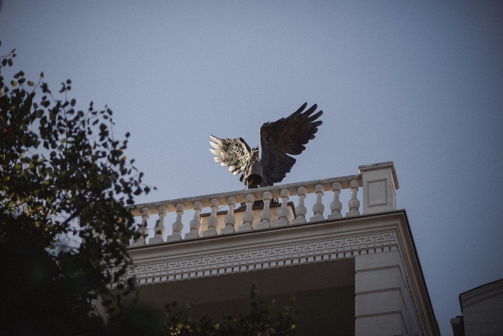 Орел на одному з будинків Херсона