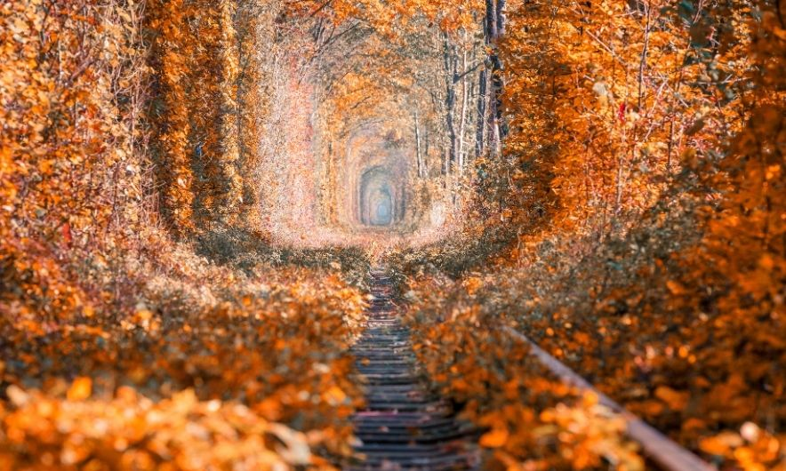 Тоннель любви осенью