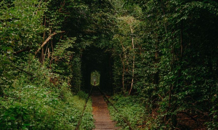 Любовний туннель
