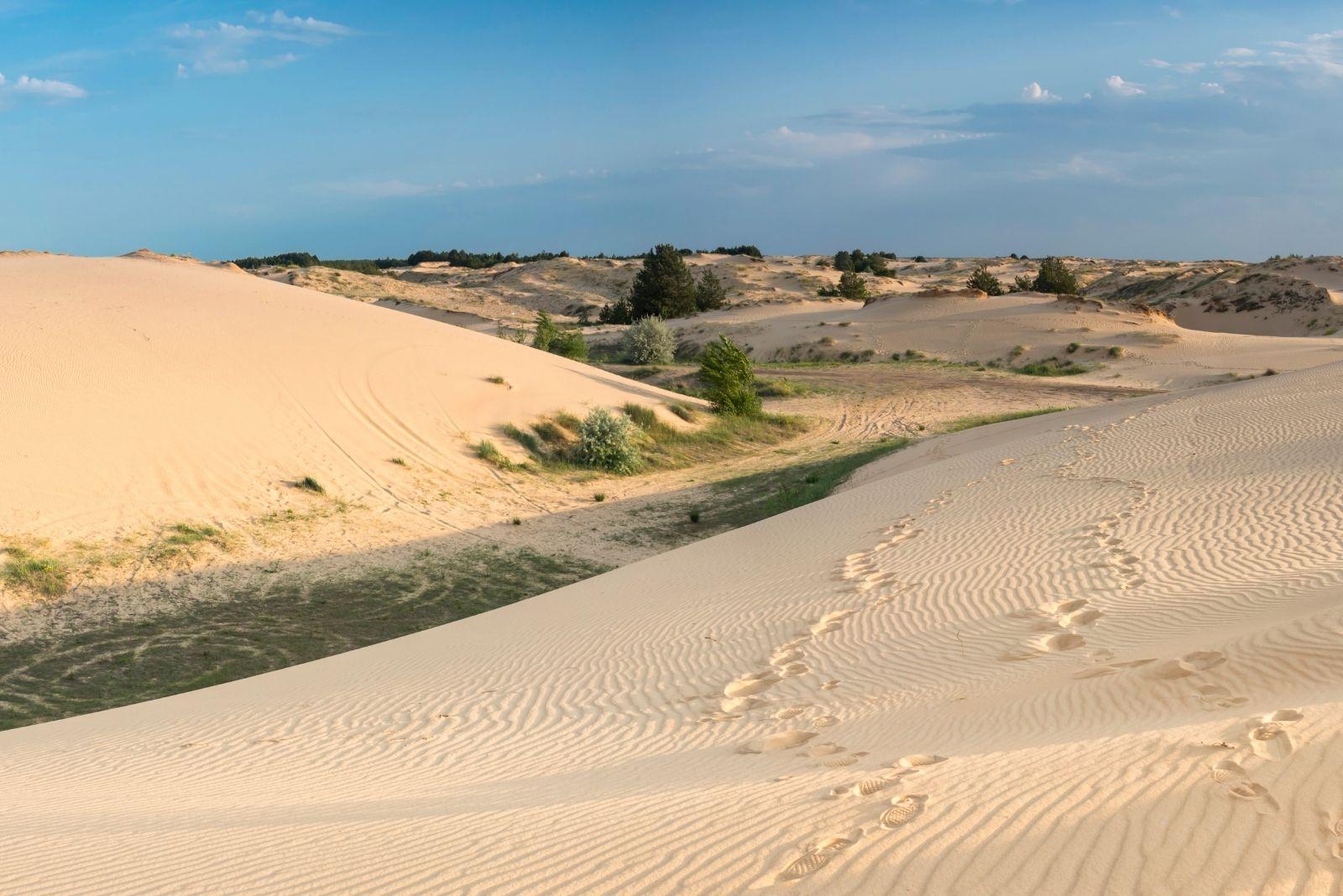 Пустыня летом