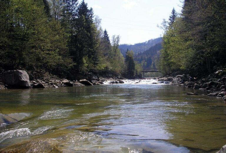 Річка в Яремче