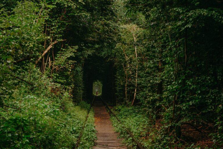 Загадочный тоннель
