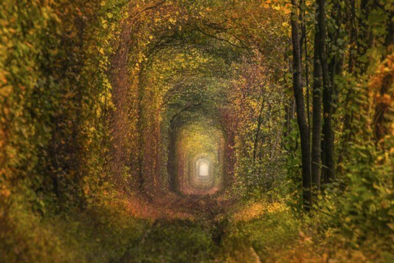 Тоннель в начале осени
