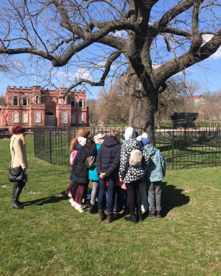 Старый дуб в Херсоне