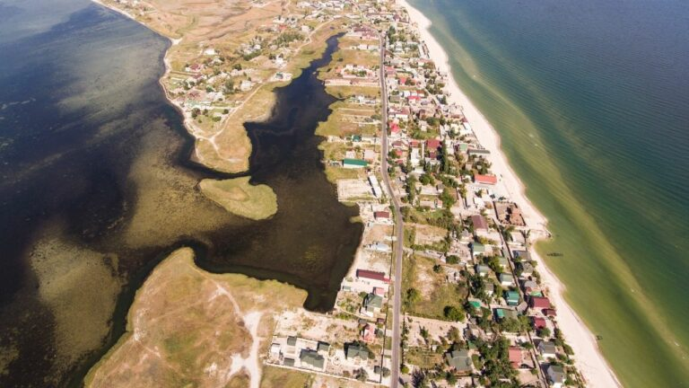 Берез Азовского моря