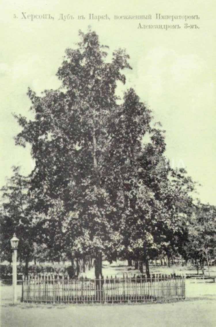 Фото старого парка