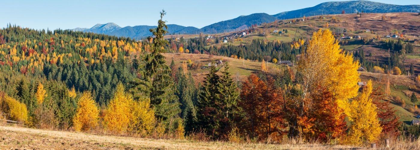 Куди поїхати восени в Україні: 17 красивих місць