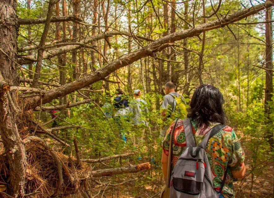 Олешковский лес, Херсонская область