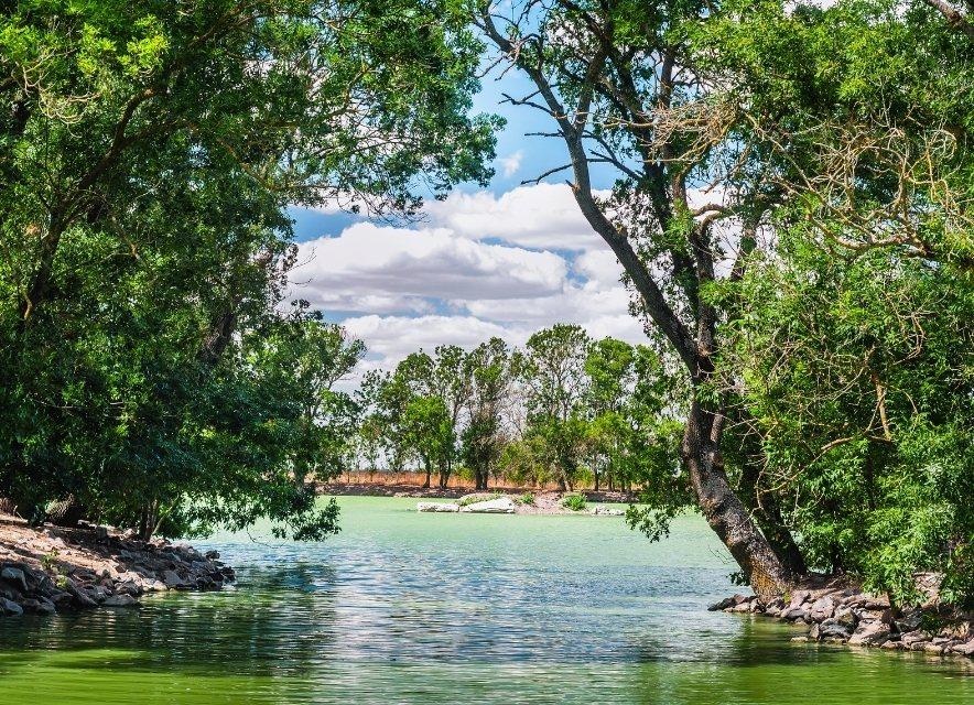 Озеро в Асканії-Нова