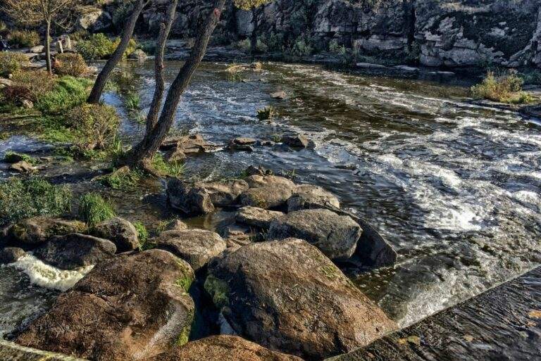 Река в Буках