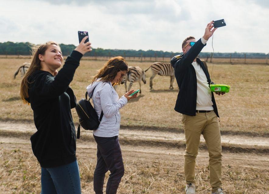 Селфі з зебрами