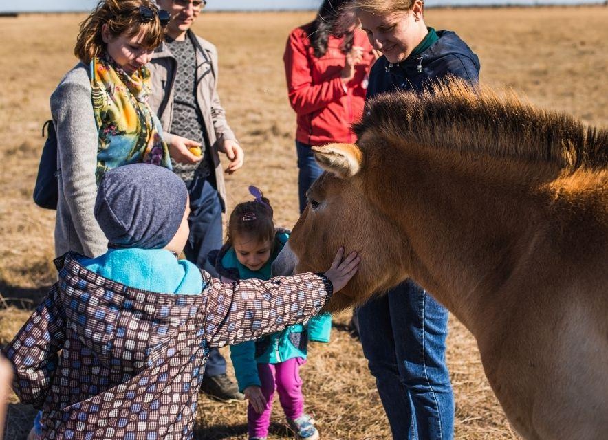 Діти та кінь Пржевальського