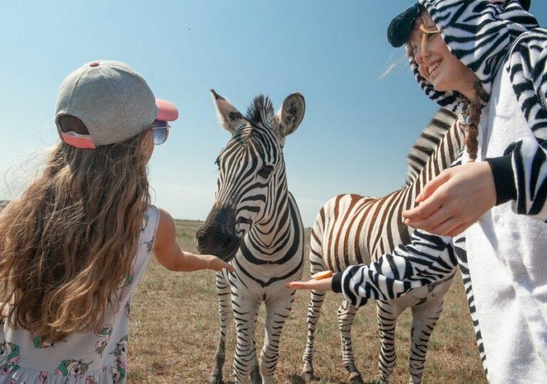 Дети и зебры в Аскании-Нова