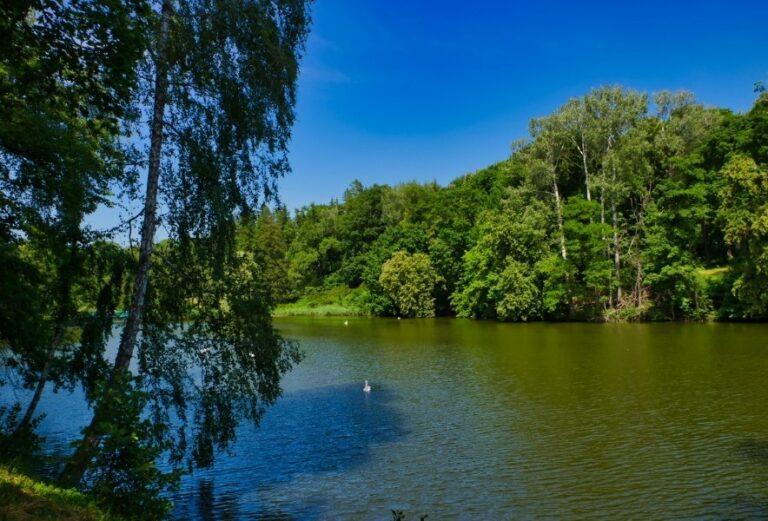 Природный ландшафт парка