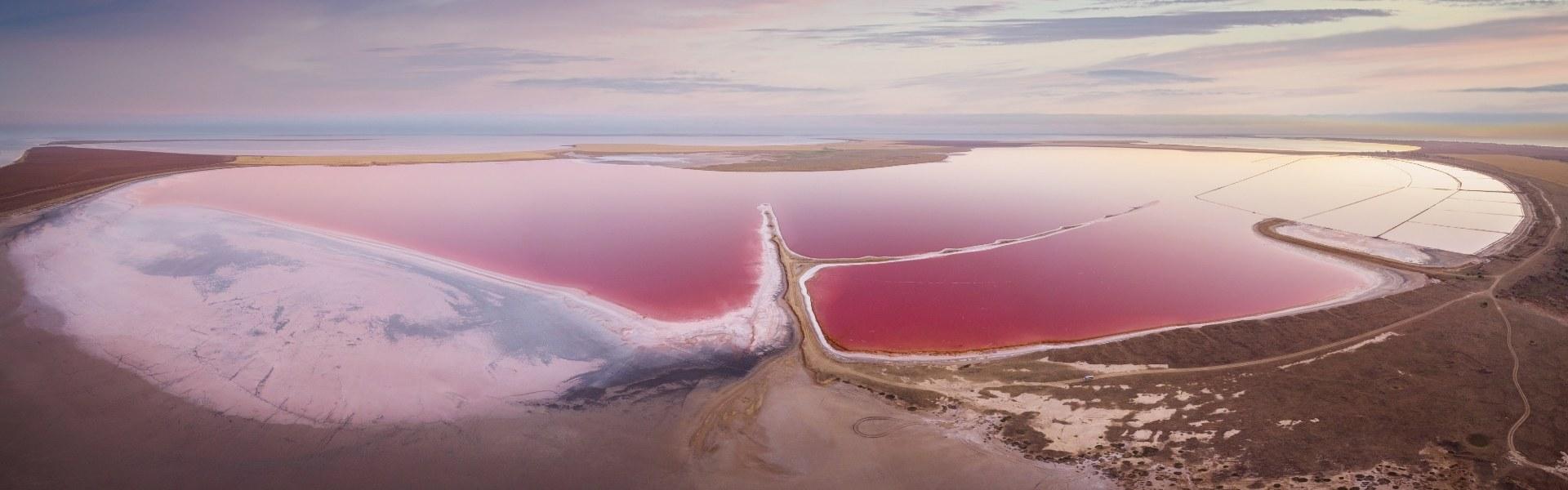 Тур на розовые озера и в Асканию-Нова