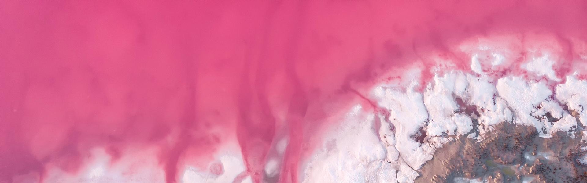 Розовые озера и Аскания-Нова из Запорожья